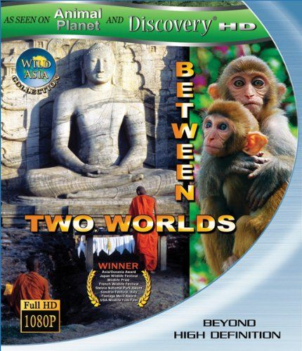 Discovery HD  Wild Asia  Between To Worlds - İki Dünya Arasında  2010  1080p  DUAL